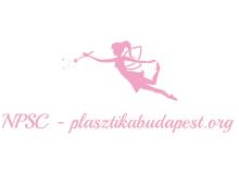 NPSC plasztikabudapest.org