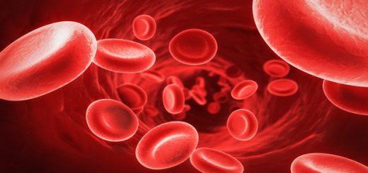 étkezési vérszegénység nemi polipok és szemölcsök